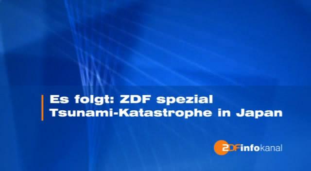 Dokujunkies Special 2011.1
