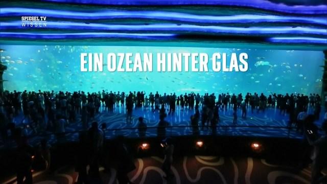 hinter glas bilder