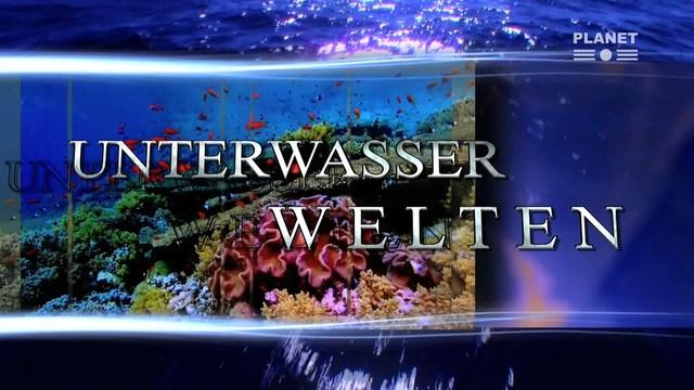 Unterwasserwelten.jpg